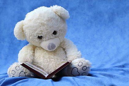 Stuffed bear reading a book